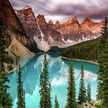 Canada tour package with Indian food